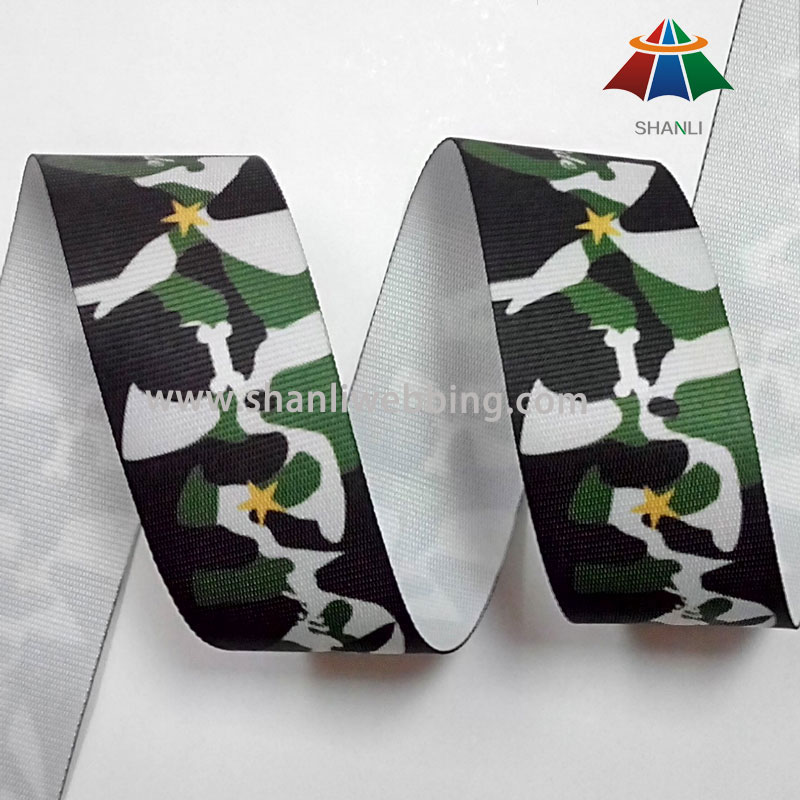 38mm Polyester Camouflage Webbing