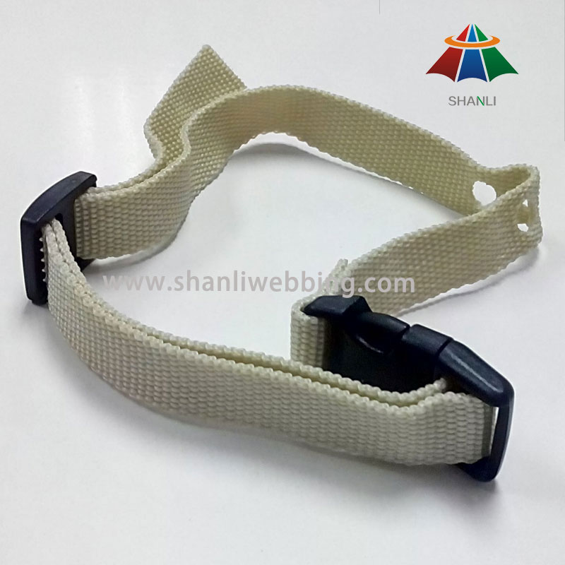 Best Price PP Material Pet Collar, Dog Collar