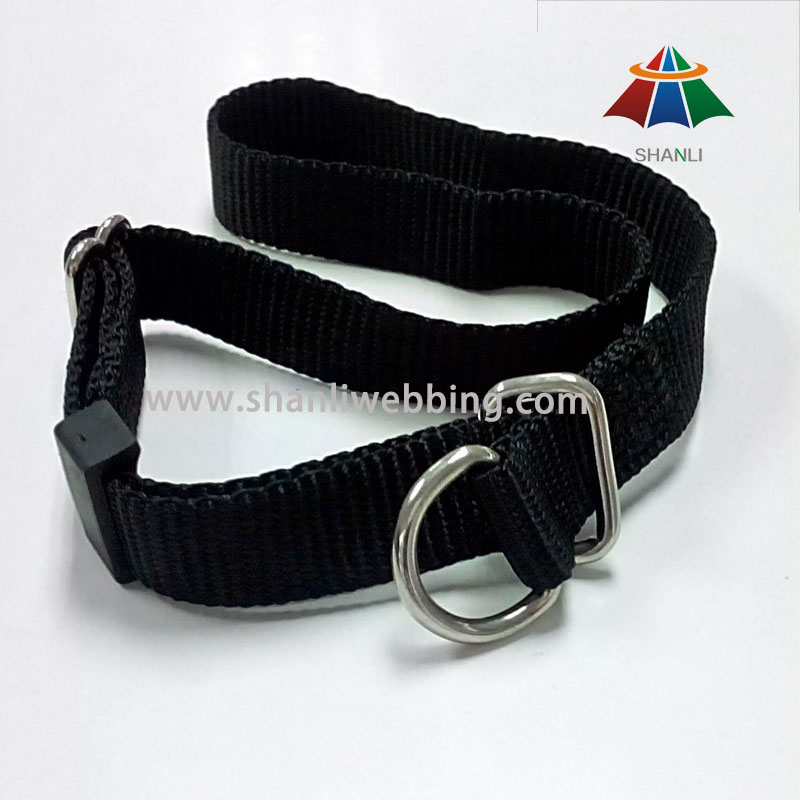 Black Nylon Dog Collar (with D-ring buckle)