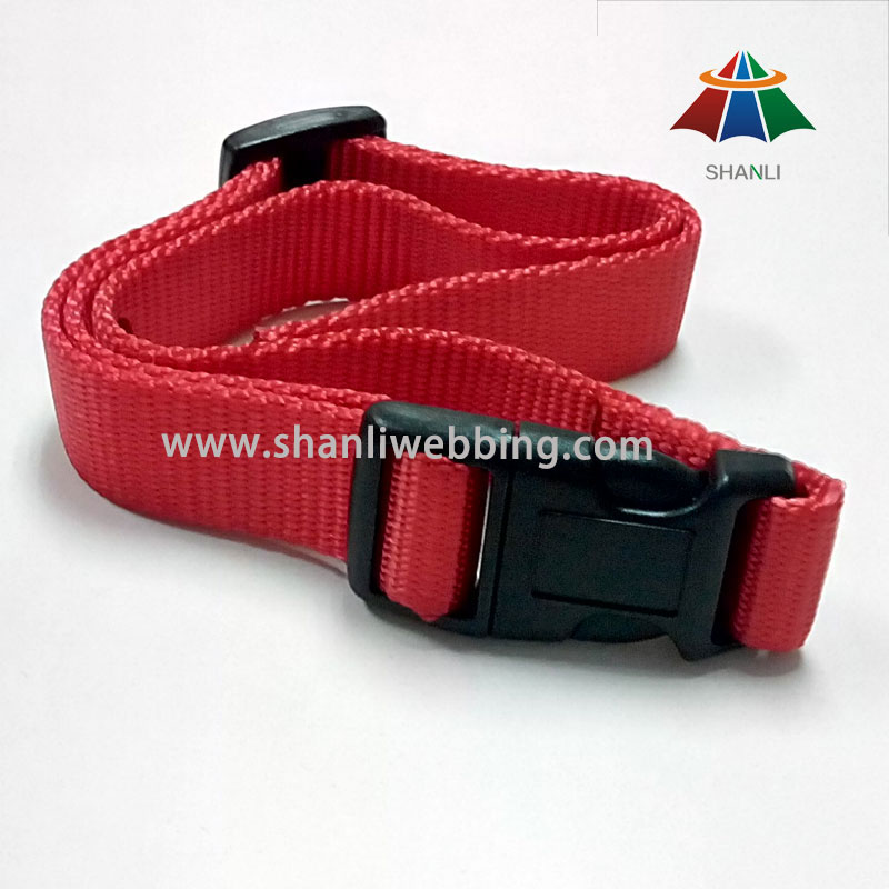 25mm Red Nylon Webbing Dog Collar
