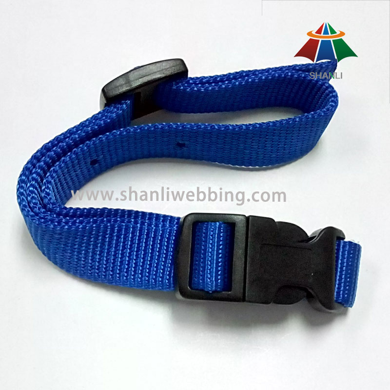 Blue Color Nylon Webbing Pet Products, Dog Collar