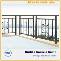 TPA-F9 Fence for Balcony Protection