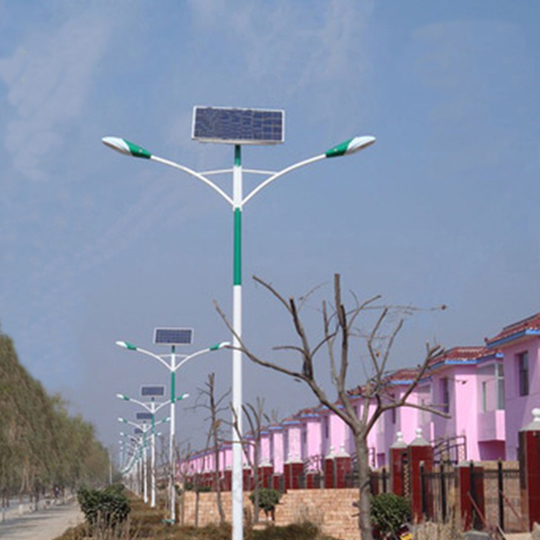 5M 20W Solar Street Light with 2 Led Lamps