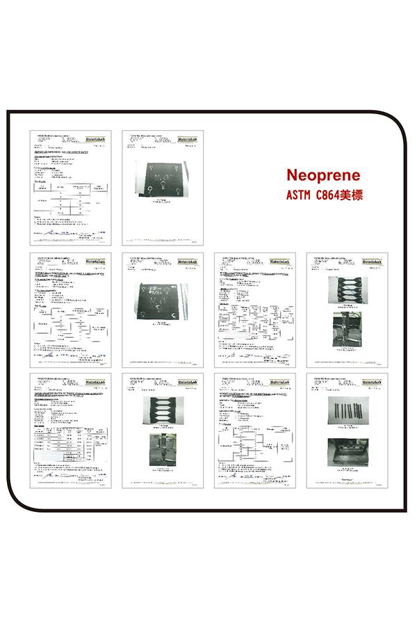 ASTM C864 (Neopren )