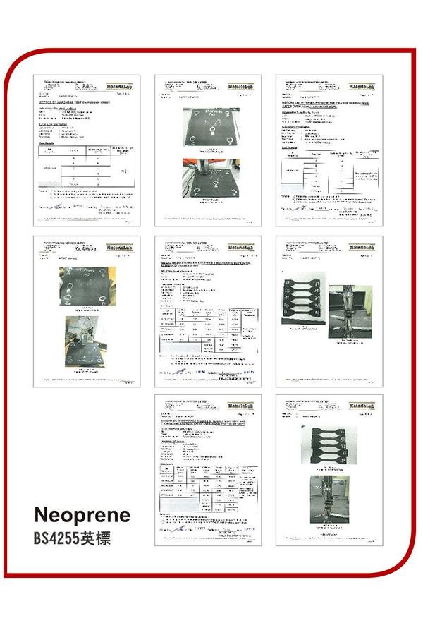 BS4255 (Neopren )