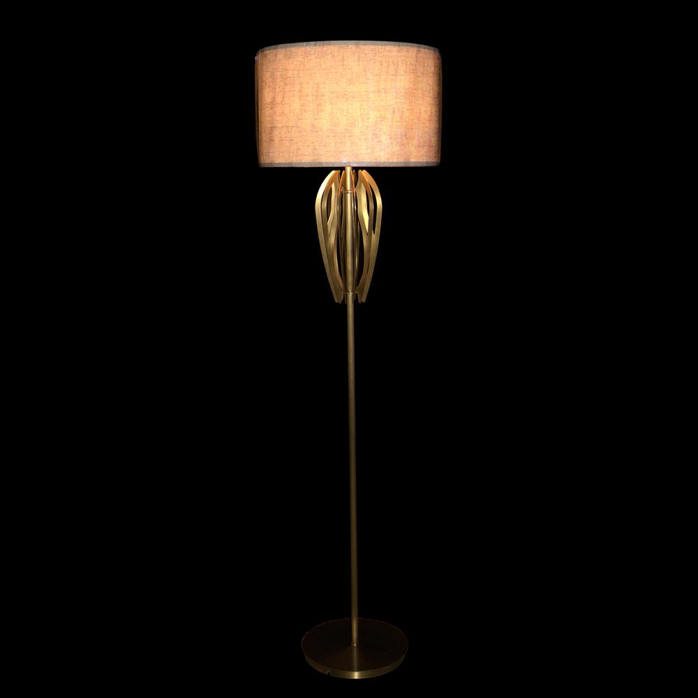Concise Design Floor Lamp (D480 H1750-1)